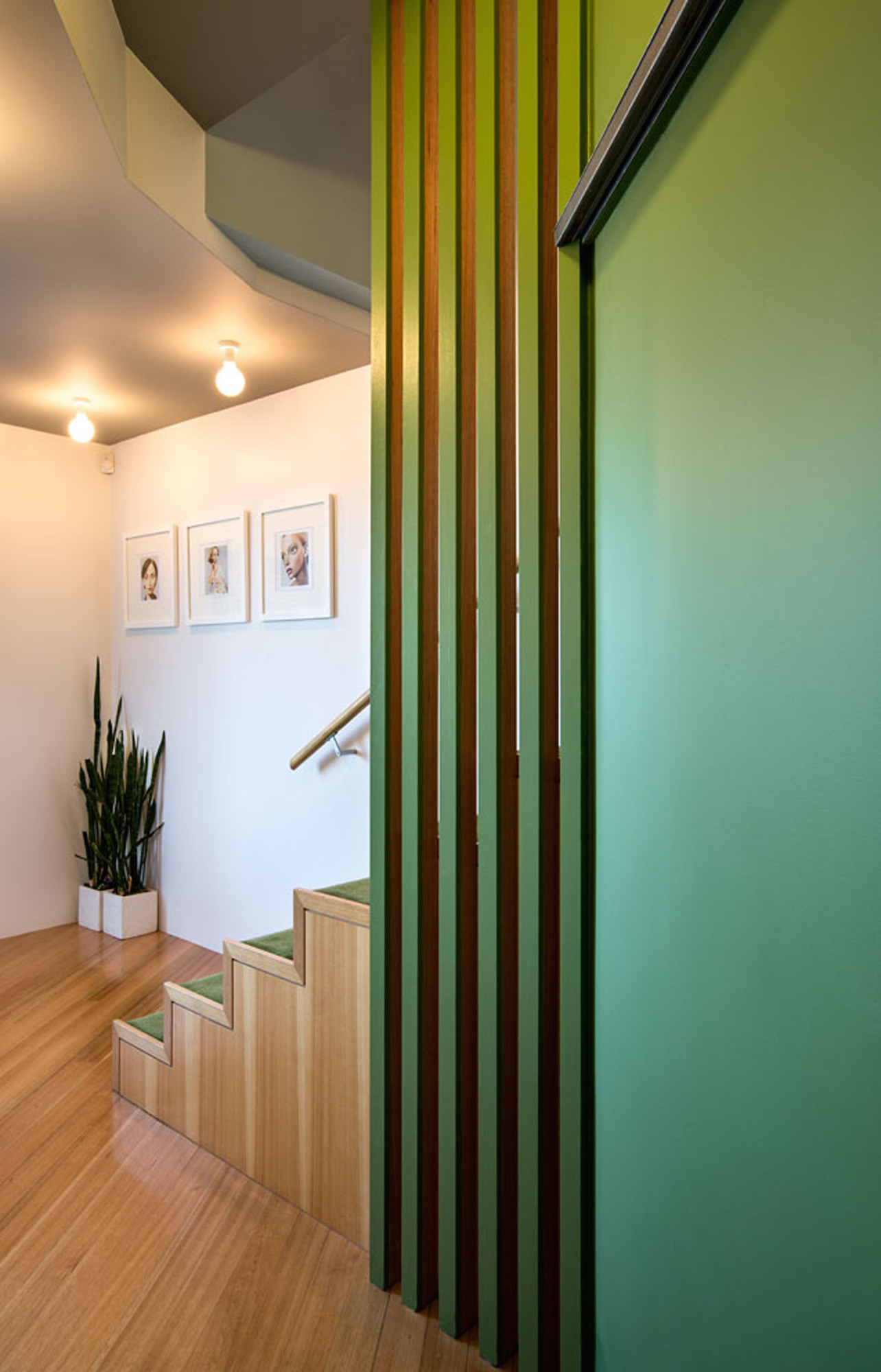 seatoun-heights-house-parsonson-architects_court27
